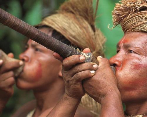 Die Flora & Fauna Südamerikas - Galapagos Inseln & Amazonas Dschungeltour in Peru