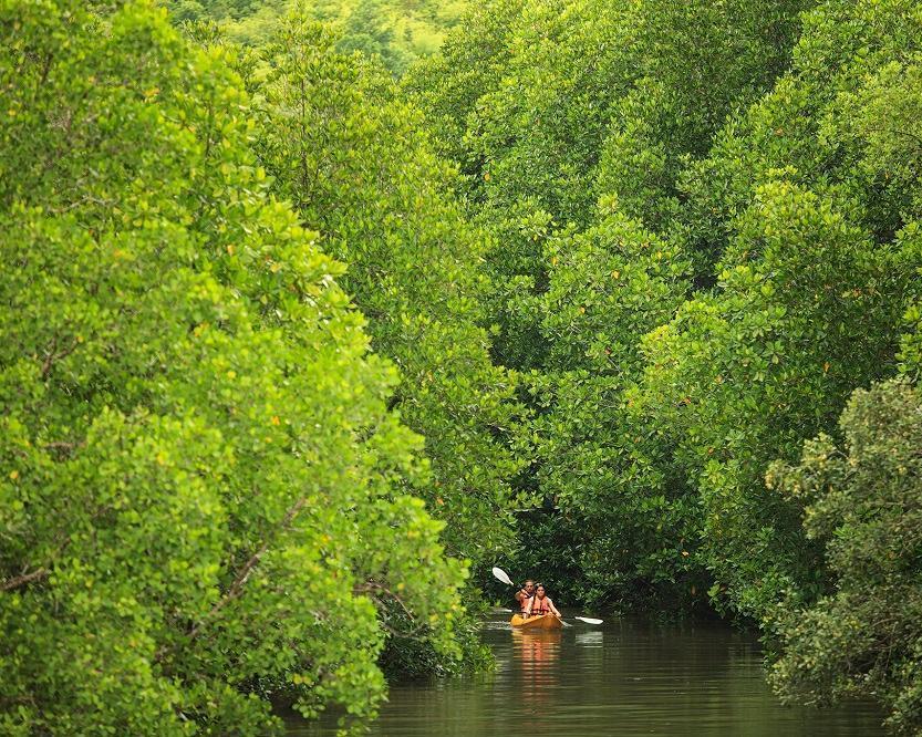 """Baden auf Phuket, """"Elephant Hills Jungle Safari"""" & Abschalten auf Krabi"""