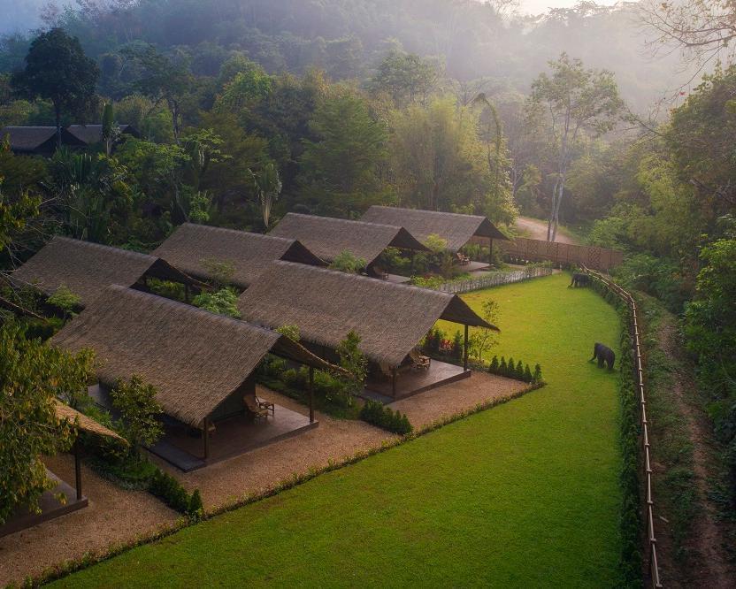 """Elephant Hills Jungle Camp"" (2 Nächte)"