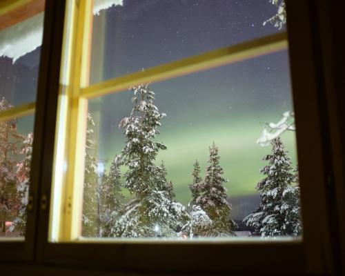 Semana en la Laponia más auténtica
