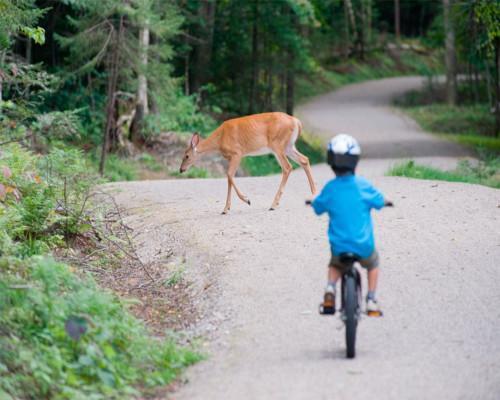 Parques de Canadá con niños
