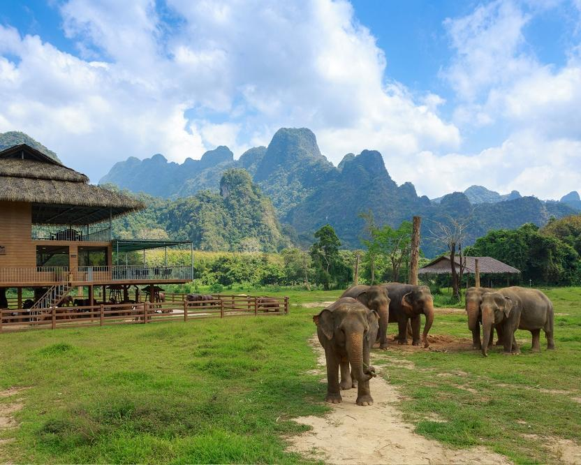 "Khao Lak, ""Elephant Hills Regenwald Natur Safari"" & Phuket"