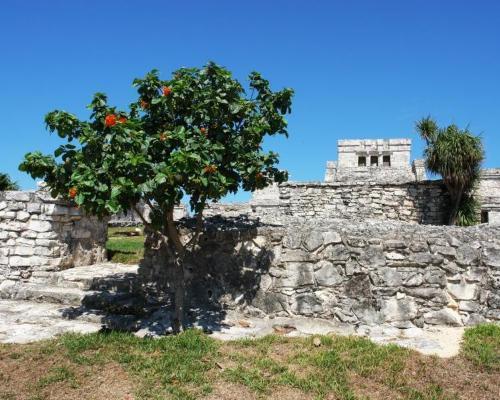 """Single-Special: Rundreise """"Höhepunkte Yucatans"""" & Baden an der Riviera Maya"""
