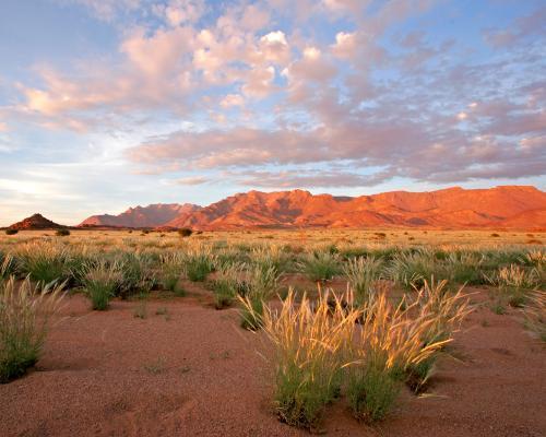 """Selbstfahrer-Rundreise """"Nördliche Höhepunkte Namibias"""" & Kapstadt mit Cape Point"""