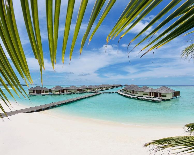 Malediven - Reisetraum Wasservilla im Nord Male Atoll