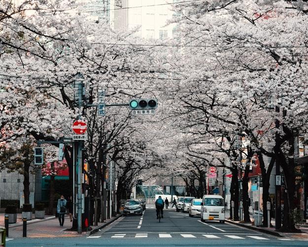 Japon Tokio