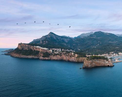 Especial Fin de año en Mallorca