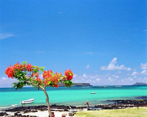 9 Days. Mauritius 5* I Cape Town 5*