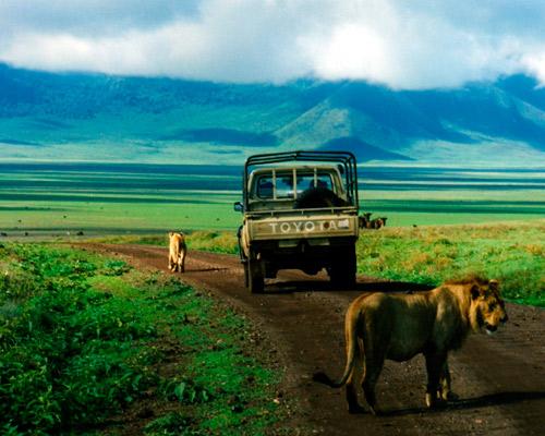 Tanzania, Safari Ninapenda 6D / 5N