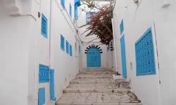 Descubre Túnez
