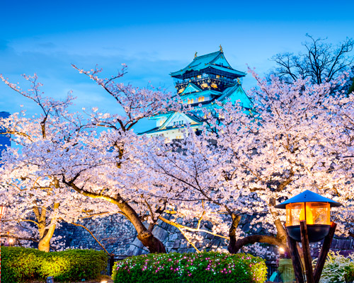 Offer Japan: Tokyo+Osaka by less than 1000€