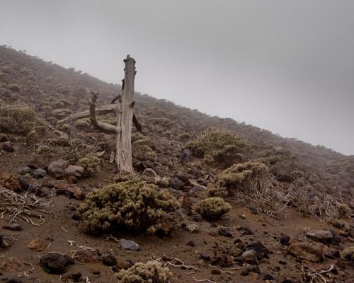 España La Palma (Islas Canarias)