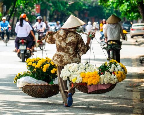 15-daagse rondreis Vietnam