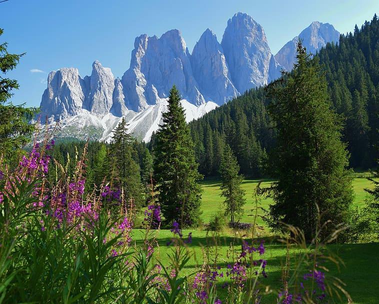 Case de vacanță și locuințe în Vigo Rendena - Trentino-Alto Adige, Italia | Airbnb