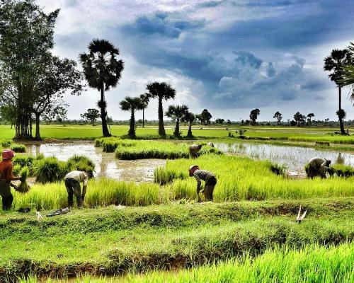 Vietnam y Camboya a tu alcance