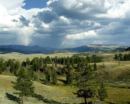 Estados Unidos de America Yellowstone: Parque Nacional