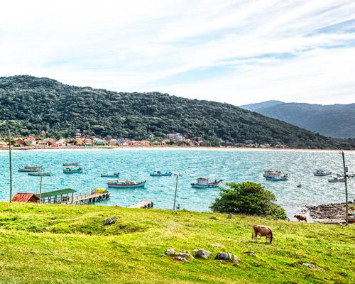 Vacaciones de Verano en Florianopolis!