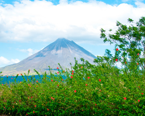 Ruta por Costa Rica- Pura Vida
