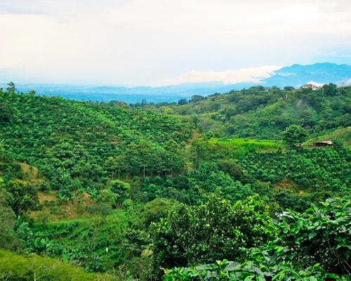 Esencia de Costa Rica