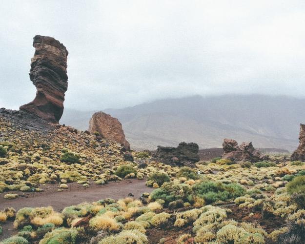 Tenerife con los tuyos