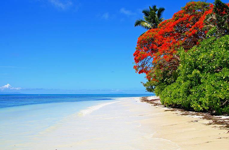 6 Days. Seychelles 4* I Dubai 4*