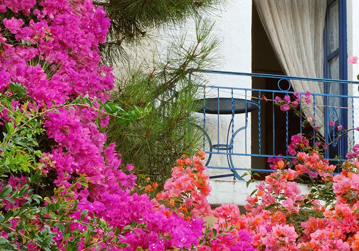 10 Days. Santorini 5* I Athens 5* I Mykonos 5*
