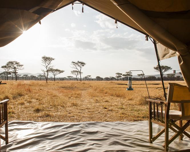 """Tansania Simba Safari"" & Strandparadies Seychellen"
