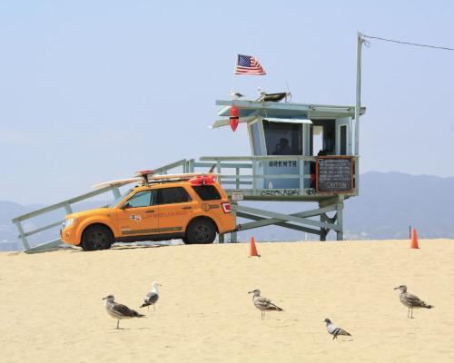 Fly & Drive Ostküste: von New York bis Miami mit dem Mietwagen