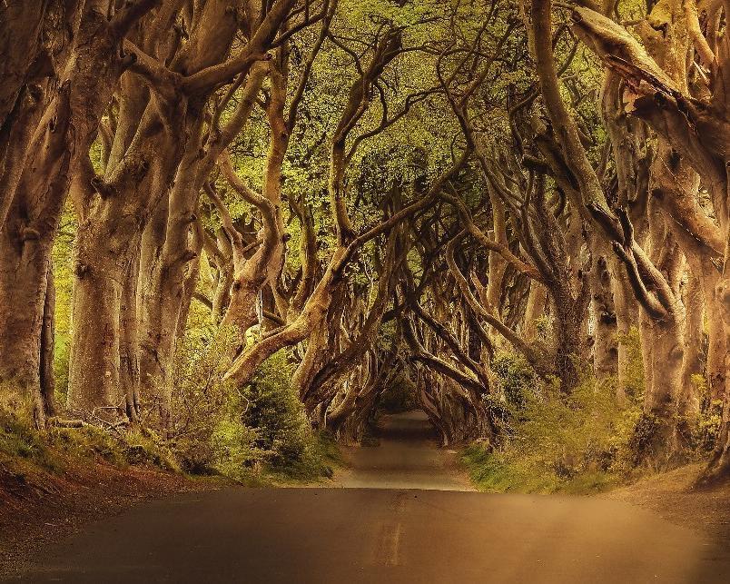 Irland entdecken inkl. Games of Thrones & P.S. Ich liebe Dich-Drehorte