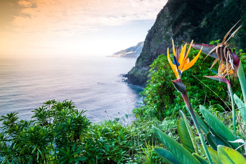Madeira utazás repülővel és szállodával áprilisban