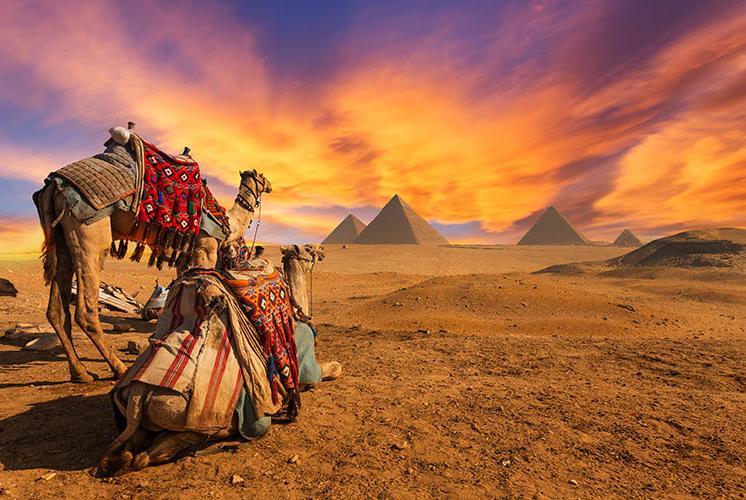 5 Days. Cairo 4*
