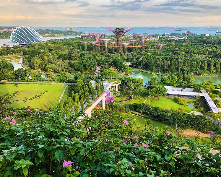 5 Days. Singapore 5*