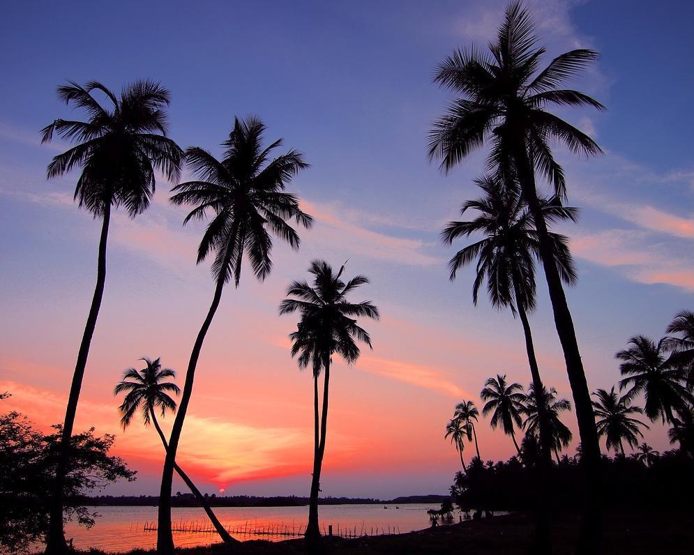 "Deluxe-Summer-Special: Rundreise ""Fabelhaftes Sri Lanka"" & Baden in Beruwela/Bentota"