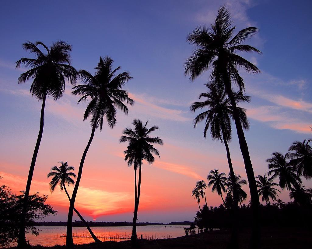Badeurlaub in Sri Lanka: Ostküste (Passikudah) mit Besichtigung in Sigiriya & Dambulla